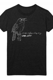 House Wren Tee (Black)