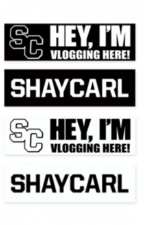 Bumper Stickers (4 pack)