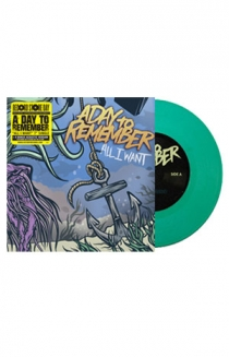 All I Want Vinyl (Teal)
