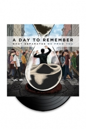 What Separates Me From You Vinyl Vinyls from A Day To Remember