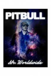 Mr. Worldwide Poster