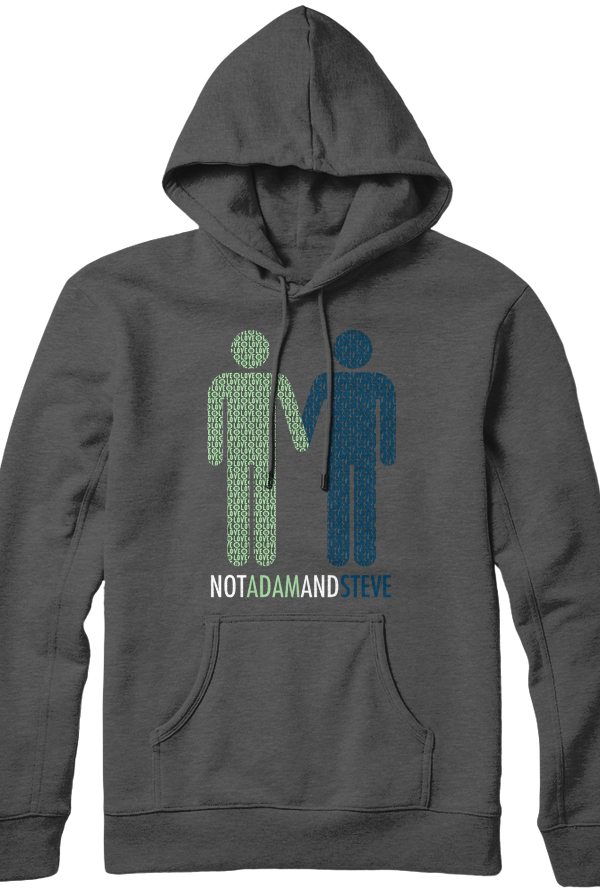 Not Adam And Steve Hoodie 0