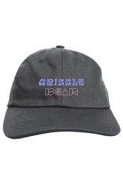 Grizzly Bear Dad Hat