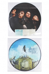 Collide With The Sky Picture Disk Vinyl