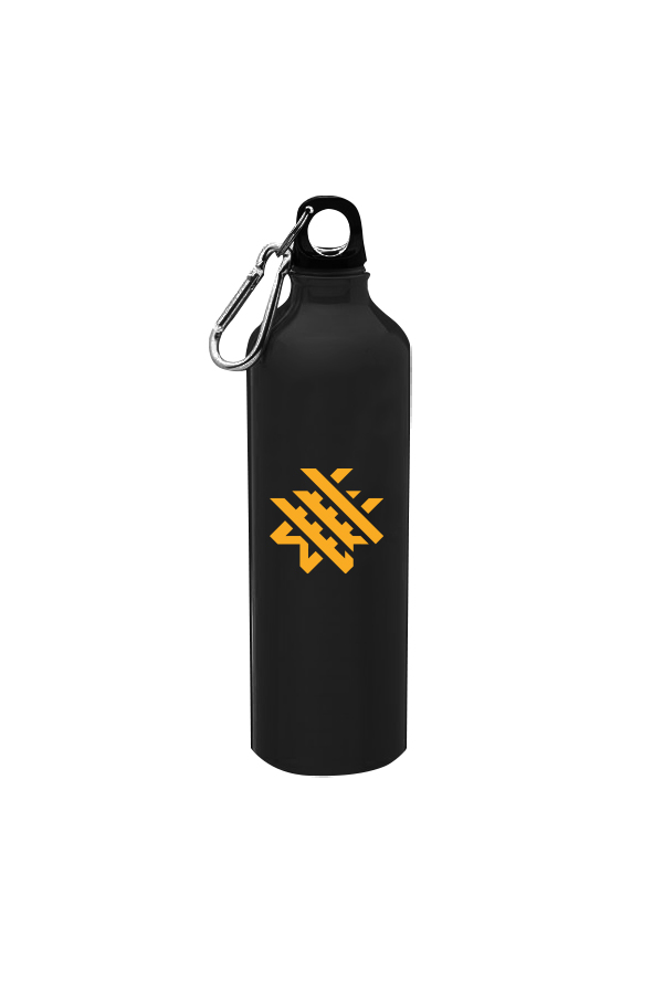Logo Aluminum Water Bottle (20oz)