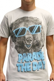 Cool Bear (Gray)