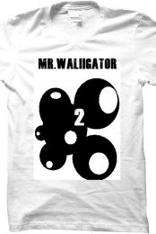 Mr.Waliigator 2nd channel