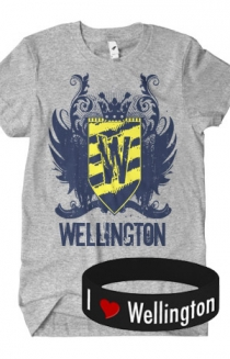 Logo T-Shirt + Bracelet Package (Grey)
