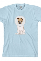 Goose Cone (Light Blue)