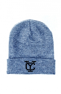 Logo Beanie (Blue and White)